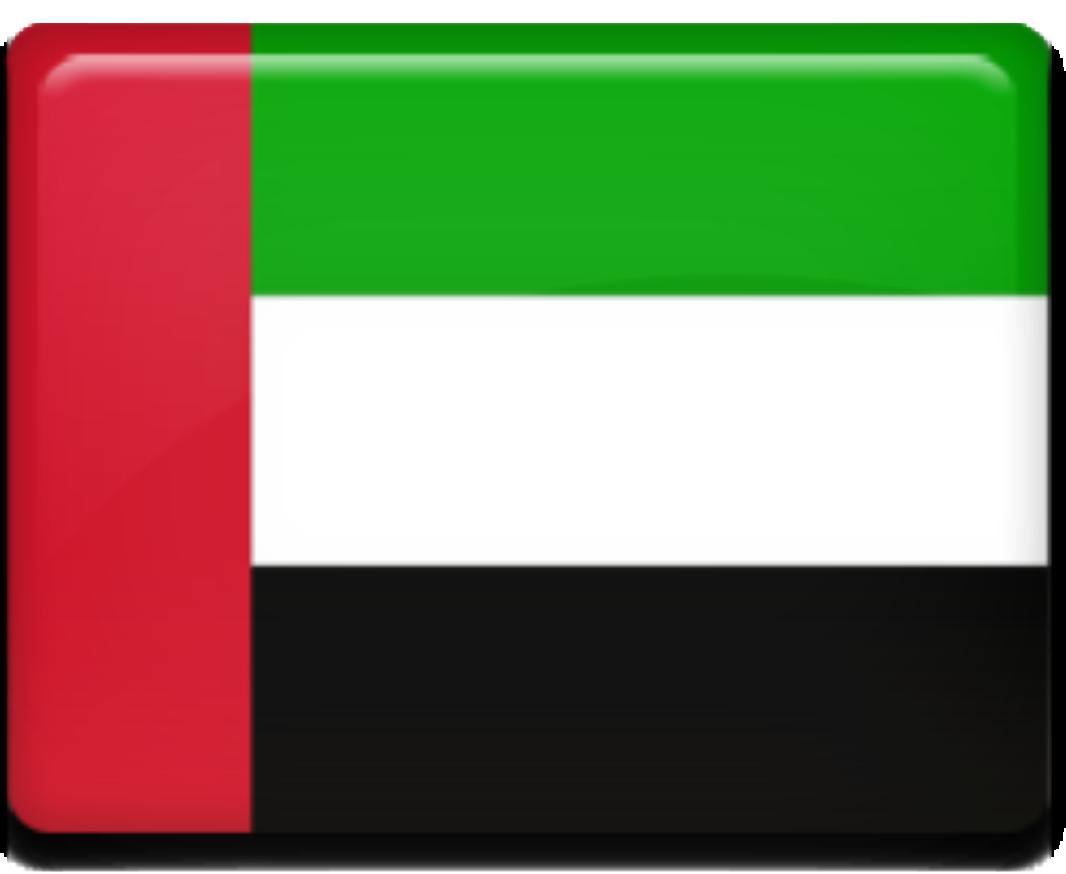 Vizos, Jungtiniai Arabų Emyratai, dokumentų tvarkymas vizoms į Jungtinius Arabų Emyratus